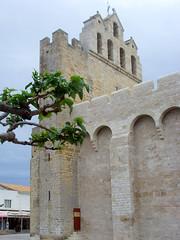 Saintes-Maries-de-la-Mer, France - la Camargue