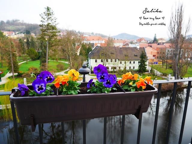 Hotel Ruze薔薇飯店Charming Hotel in cesky Krumlov中世紀扮裝晚餐-自助式早餐 (8)