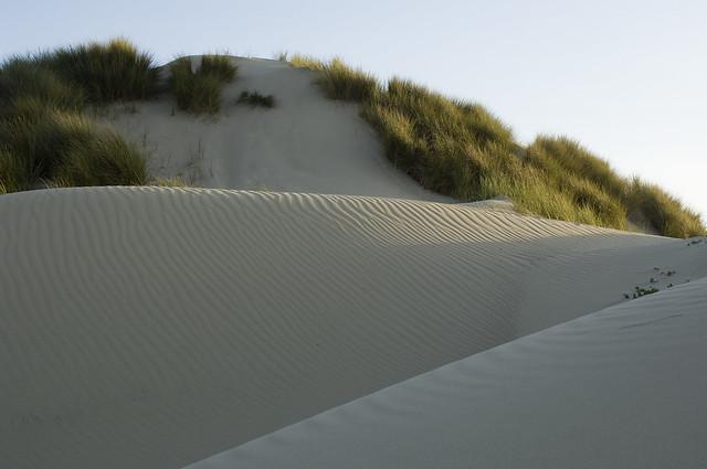 ON_6 Oceano Nipomo Dunes