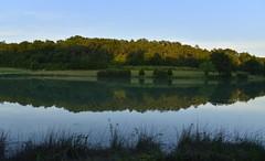 Le grand étang dans une zone boisée au crépuscule