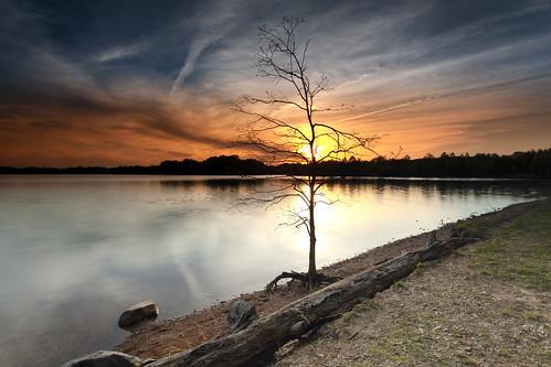 light sunset reflection water silhouette day cloudy maryland lee filters byebye lastsunset boyds lasthurrah blackhillregionalpark littlesenecalake myfavoritetree singhray