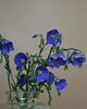 blue flax bouquet