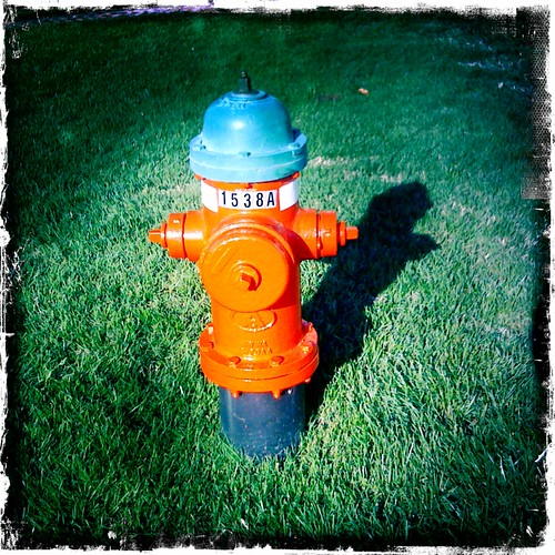 cameraphone red green grass hydrant fire firehydrant iphone iphoneography hipstamatic