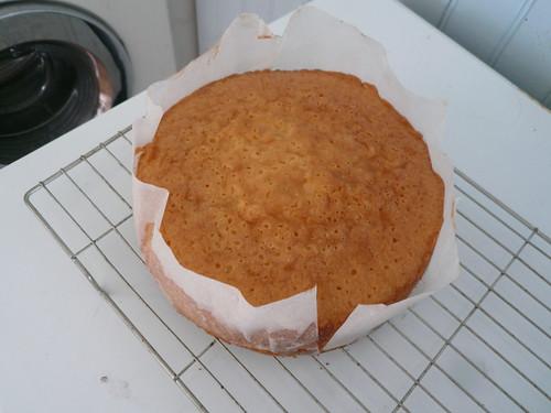 lemon cake sans icing