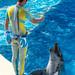 150216 Enoshima Aquarium-28.jpg