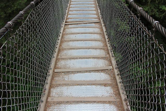 North Vancouver Lynn Canyon Suspension Bridge