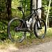Marauder // WTB KOM i29's by 44 Bikes