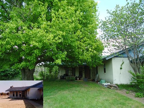 House 1993-2013