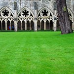 Salisbury Cathedral - A Beautiful Vision of Cloistered Green!
