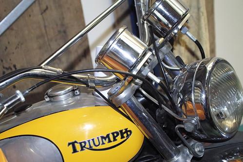 TRIUMPH TROPHY
