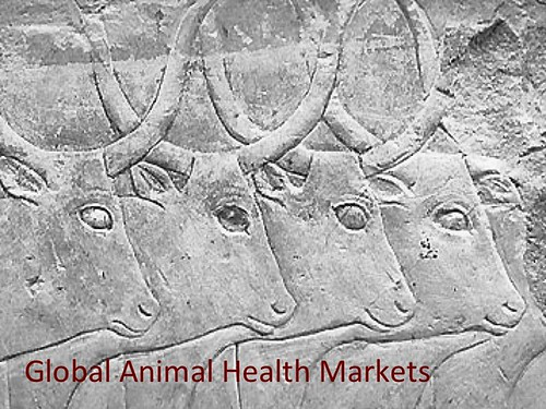 Global animal health markets