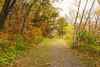 Silverbrook Trail 10.15.2016