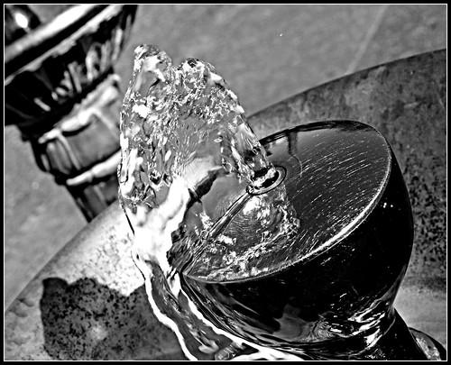macro water oregon portland blackwhite 6ws beverage ribbet bensonhighschool flickrlounge assignment52182013 tp541 bensonbubblerdrinkingfountain