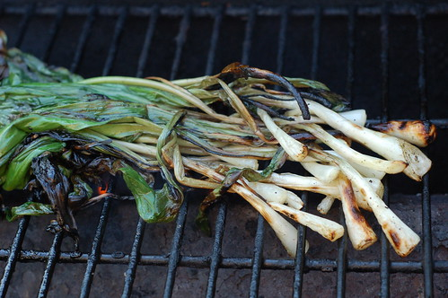 Fresh-picked ramps on the grill by Eve Fox, the Garden of Eating blog, copyright 2013