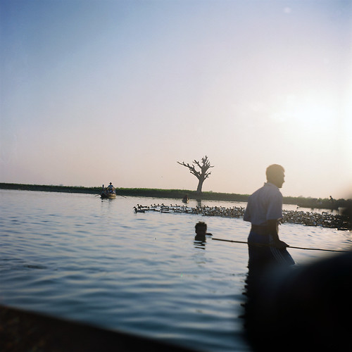 city trip travel sunset people fishing fishermen myanmar local tradition activity 城市 旅行 日落 人物 mandalay flim ubeinbridge 传统 富士 fujireala100 taungthaman 海鸥 渔民 活动 缅甸 seagull4b 胶片 曼德勒 打鱼 乌本桥 塔曼湖