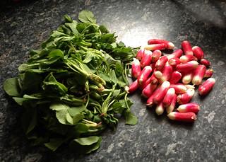 pickles de radis et fanes à la chinoise