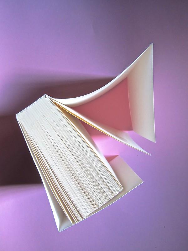Errori necessari, di caleb Crain. 66thand2nd edizioni 2014. Progetto grafico: : Silvana Amato. Ill. alla cop.: P. d'Oltreppe. Taglio superiore (part), 1