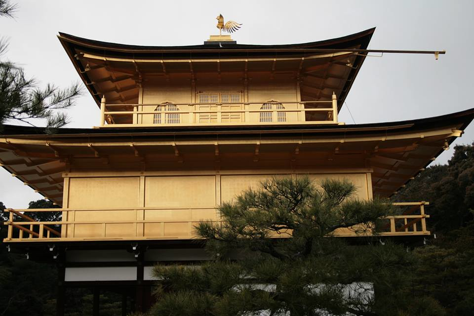 Fotos del Rokuon-ji o templo de oro, también conocido como kinkaku-ji por Javier García, Miguel León y Juan Carlos Pérez