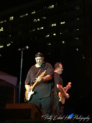Smithereens at Wildflower Fest 2015