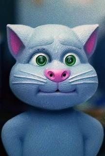 Talking cat on Kodak Colorplus 200