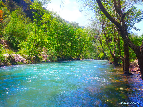 voyage travel blue trees lebanon tree verde green tourism nature water river eau natura vert rivière valley libano arbre adonis liban fleuve لبنان ابراهيم سفر ماء coulant اشجار طبيعة وادي nahribrahim خضار نهر شجر مياه arbero سياحة جارية lebanesedremers مشروعسدجنة jannitkartaba نهرابراهيم جنةقرطبا جنةقرطبة