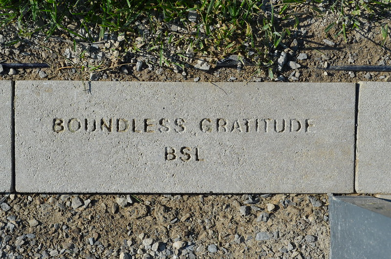 Boundless Gratitude