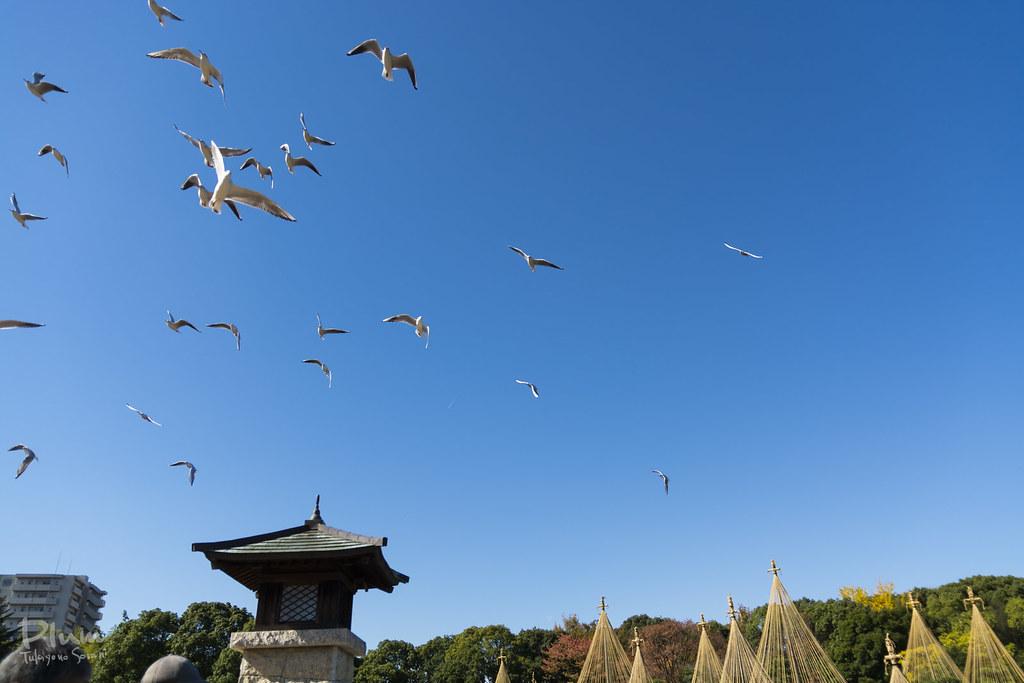 Shirotori Garden-28