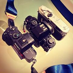 3 full frame cameras