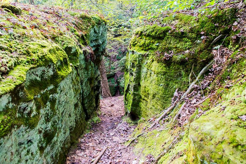 Fern Cliff Nature Preserve - October 5, 2016