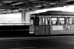 tram under Erzsébeth bridge