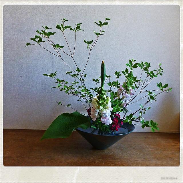 【盛花】ドウダンツツジ、キンギョソウ、アイリス【2013_05_03】