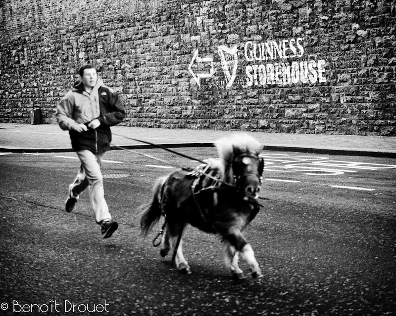 Run, Run, Run !