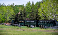Fort Edmonton Train