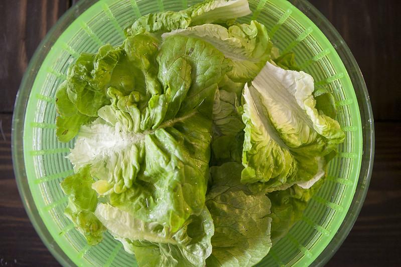 lettuceIMG_2545