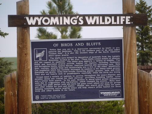 wyoming's wildlife