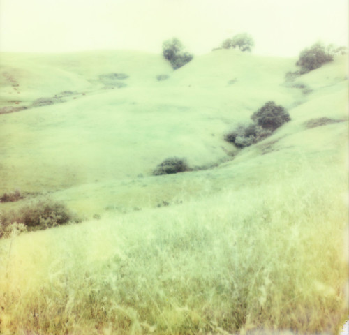 mountain green film grass hill sonoma pasture instant slr680 theimpossibleproject px680