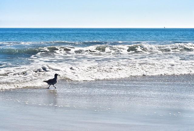 Breakers Beach