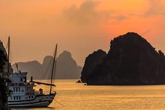 Halong Bay - Sailing at sunset