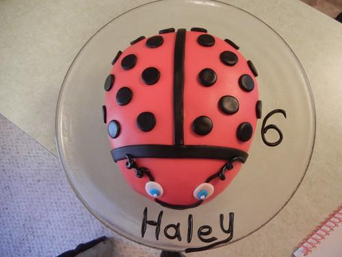 May 2 2013 Cake (3)