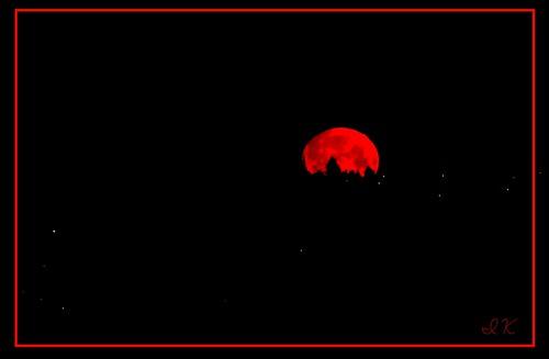 moon fullmoon bloodmoon redmoon junemoon rosemoon moontrees largemoon moonmadness moonmoods hotmoon strawberryfullmoon allmoons allfullmoons fullmoonwithlandscape