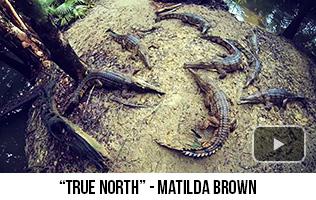 'True North' - Matilda Brown