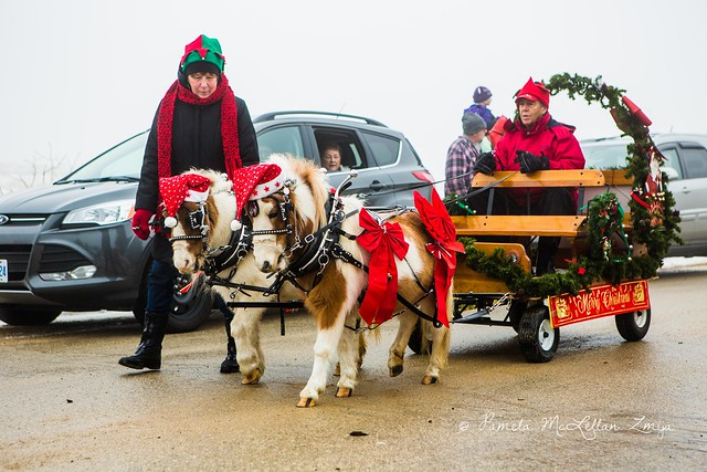 20141213-HolsteinChristmasParade-WM-27