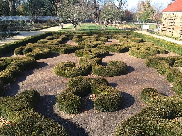 Trimmed hedges, Mount Vernon