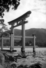 Great Torii at Hakone Shrine (1956)