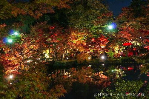 2014京阪神-永觀堂夜間拜觀2296_001