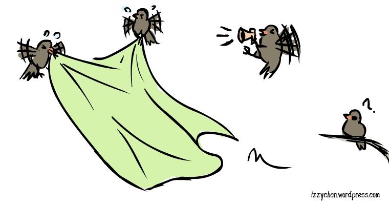 birds fabric move workout megaphone