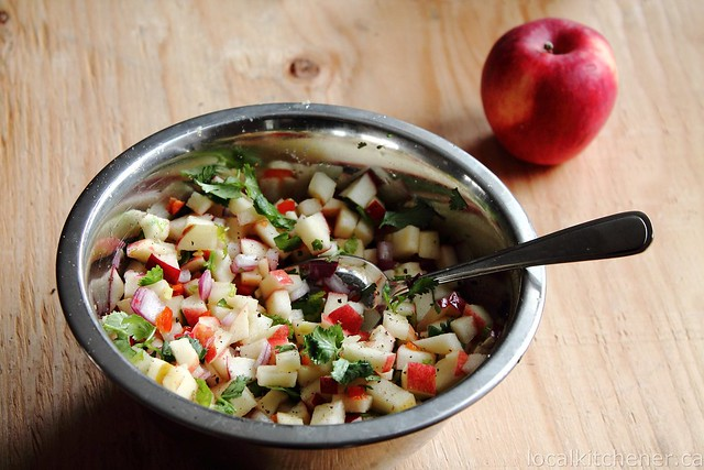 winter de gallo apple salsawinter de gallo apple salsa