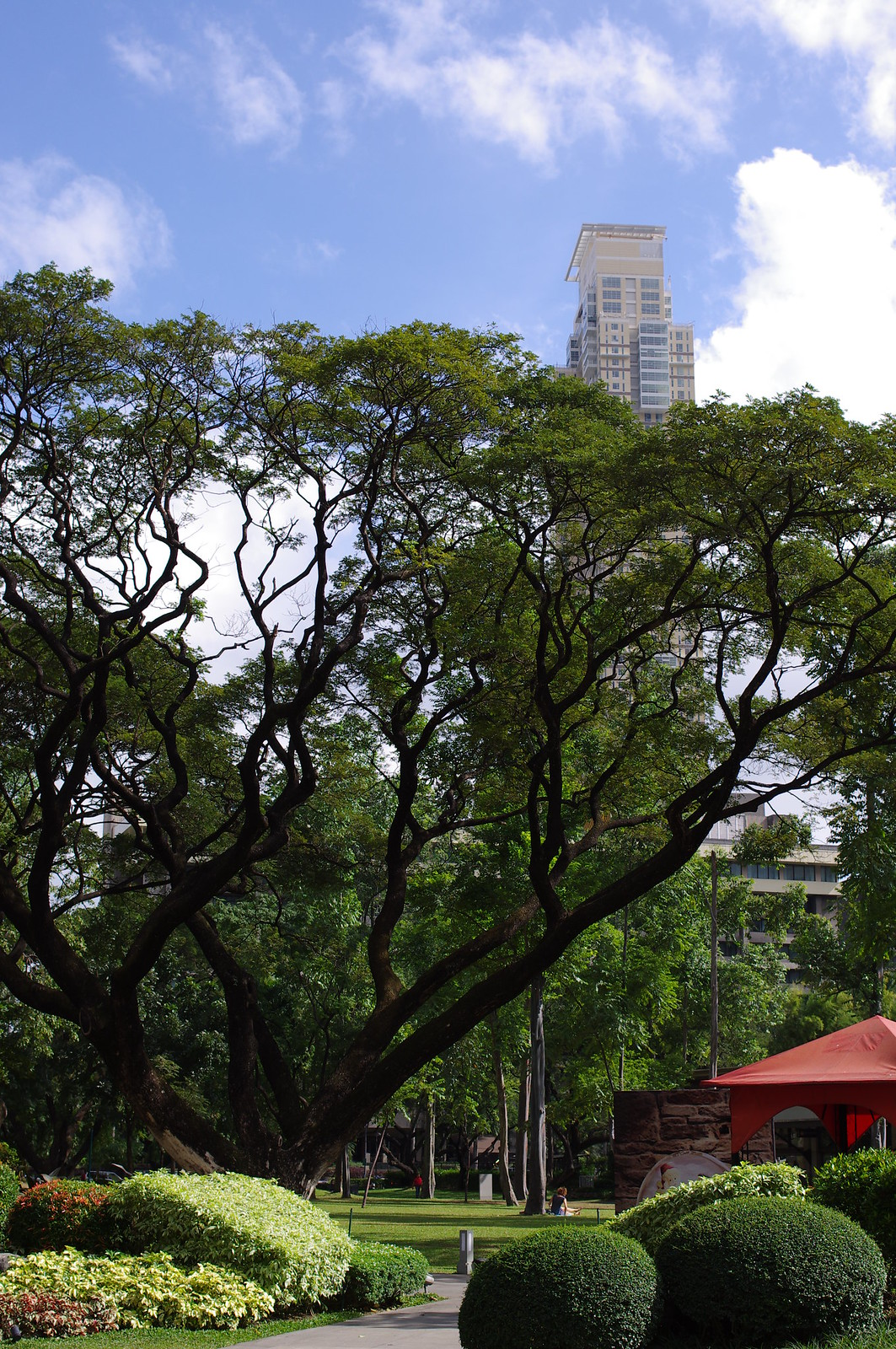 菲律賓-Ayala Triangle Park in Makati City