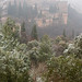 Alhambra invernal
