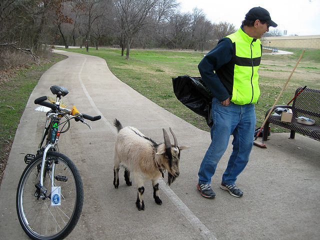 Broom Bike and Billy The Goat